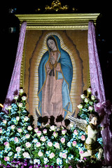 Our Lady of Guadalupe (Fritz, MD) Tags: intramurosgrandmarianprocession2016 igmp2016 igmp intramuros intramurosmanila manila marianprocession grandmarianprocession marianevents cityofmanila procession prusisyon intramurosgrandmarianprocession birhenngguadalupe ourladyofguadalupe nuestraseñoradeguadalupe