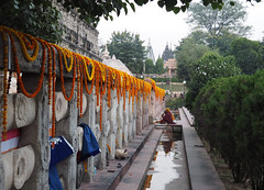 "PB140714-a (photozaki) Tags: india ""sujata kuti"" ""mahabohi temple"" ""mahabodhi mahavihara temple ""buddhist buddha buddhism ""bodhi tree"" bodhgaya gaya buddhist monk monks ashoka enlightenment ""vajrasan diamond throne"""