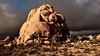 Joshua Tree National Park - California (Feridun F. Alkaya) Tags: joshuatreenationalpark joshua nature ngc park desert cactus california tree trees nationalpark national mount wild rocks geology