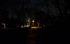 mystrt@nt (Swede1969) Tags: night street streetlight dark 3652017 8365