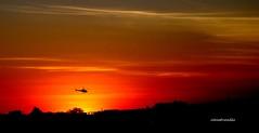 Voo ao entardecer (Sophie Carrière) Tags: entardecer sol silhueta helicóptero céu