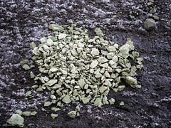 disintegrated stone