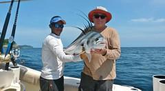 Fishing 26-June-2015 (Boquete Outdooor Adventures) Tags: fishing sportfishing deepseafishing roosterfish panamafishing boqueteoutdooradventures roxyfishing