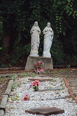 A Secret Garden (Marcellina.) Tags: church cemetery graveyard catholic madonna headstone faith religion jesus statues maryland peaceful nuns graves burial restingplace catholicism secretgarden immaculateheart finalrestingplace marcellina dominicansisters