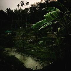 """#สวนเกษตรพอเพียงลานสกา #สวนวางแผนตัวอย่างตามรอยโครงการเศรษฐกิจพอเพียง #เจ้าของสวนสวรรค์ในขุนเขาทำตามแนวโครงการ""""ช่างหัวมัน""""เพชรบุรี #นาธานแนะนำที่เที่ยว #มาโฮมสเตย์กัน #โฮมสเตย์วิถีชีวิตชาวลานสกา #เที่ยวแบบมีสติ #เที่ยวแบบเรียนรู้และนำไปใช้ได้ด้วย #ผลิตภัณ"""