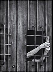 Manos Arriba!! (Hands Up!!) (Samy Collazo) Tags: canon20d canoneos28105usm sanjuan oldsanjuan viejosanjuan puertorico tecnologia technology celular cellular movil telefono telephone camara camera hands manos lightroom niksilverefexpro2 aviary