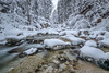 Magic Forest (lindner.photography) Tags: landscape landschaft river winter ice snow berchtesgaden water long exposure langzeitbelichtung forest trees