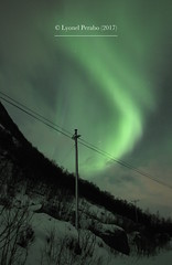 Northern_Lights_21_01_2017_IV (LyonelPerabo) Tags: aurora auroraborealis borealis light lights norge north norway northern northnorway nordic northernlight northernlights nord nordnorge arctic polar troms tromsø tromso green grey black night nighttime landscape nature sky skies cloud clouds cloudy winter ice icy snow snowy tree trees forest mountain mountains hill hills horizon lauklines tulleng kattfjord kvaløya kvaloya kvaløy kvaloy island islands coast sea coastal fjord dark darkness 2017 january