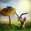 Collaboration (jaci XIII) Tags: gato esquilo animal cogumelo paisagem cat squirrel mushroom landscape pássaro ave bird