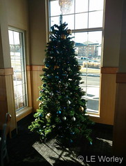 December 24, 2016 - Thornton Culver's decorated for the holiday. (LE Worley)
