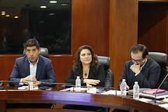 2017-01-30 y 31 Reunión Plenaria y C.P. GPPAN (10)