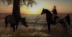Your song (sydneylevee) Tags: lost dream secondlife horses ocean land fashion yeliz maitreya lelutka hurley lara mesh pets pet animal cheval