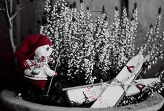Dags att åka hem... (KåTvå) Tags: fs170115 fotosondag tomte red ski gnome