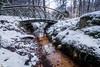 Dreamy winter stream (Jaap Mechielsen) Tags: sneeuw thenetherlands winter natuurgebied velp gelderland nederland landscape europe beekhuizen veluwezoom europa snow nl