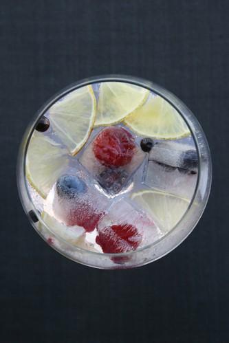 Gin Tónico - IMG_8012