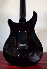 PRS SE Custom 24 30th. Anniv. AT (Freebird_71) Tags: reed paul guitar smith prs electricguitar