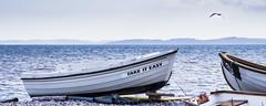 i'm just following orders (HHH Honey) Tags: birthday sea summer seascape beach landscape boats boat seaside gull devon 115 89 budleighsalterton sony70300g sonya850 115picturesin2015 89aphototakenonyourbirthday birthdaymicrominimoon