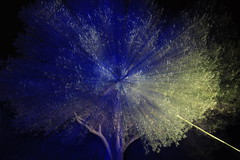 in my dream..  i saw a tree.. (luplof) Tags: longexposure blue light lightpainting abstract tree art bulb dark mood dream olive dreamy olivetree lightart sooc ledlenser lpwa lightjunkies lazyshutters lpwalliance
