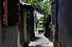 Hoi An to Sapa (sherrattsam) Tags: asia an vietnam hanoi sapa hoi anbangtosapa