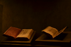 Miniatori francesi e dei Paesi Bassi e Jan Van Eyck (_Sraz) Tags: torino arte jan piemonte museo van palazzo miniatura eyck tempera oro madama pergamena