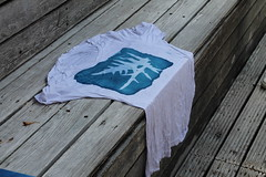 cyanotypes (2)