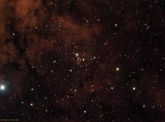 NGC6910 (CSky65) Tags: cluster ngc il lee imaging opencluster ccd gibbs deepspace jrg milkyway cygnus summertriangle fvas jimgibbs astrophotografy astrometrydotnet:status=solved jrgibbs astrometrydotnet:id=nova1172107 ngc6010