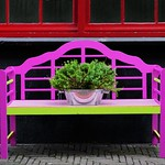Den Haag in kleur thumbnail
