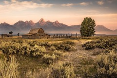 The Barn (Fabio Tode ) Tags: barn utah grand teton national park mountain farm farmhouse nikon d7200 sunrise mountains life picoftheday photo photografer photooftheday wonderful landscape tree wallpaper foggy fogs sun lights shadow trees summer holiday travel nationalpark america usa fabiotode morning like like4like likeforlike mypic picture pic sky awensome color colors path wyoming