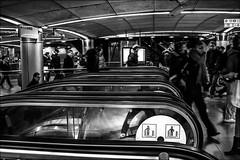 Sous le ciel de Paris / Under Paris sky (vedebe) Tags: noiretblanc netb nb bw monochrome ville city rue street urbain metro trains gares gare sousterrain escaliers humain people paris architecture
