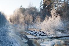 At Nukarinkoski / Nukari rapids (Olli Karjalainen) Tags: talvi tiltshift nukarinkoski tokina1224mm ollintestejä