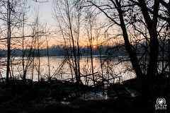 Parco del Ticino (andrea.prave) Tags: ticino parcodelticino naviglio castellettodicuggiono cuggiono italy italia lombardia lombardy campagnamilanese countryside campagna tramonto sunset atardecer solnedgång solnedgang 夕焼け غروب 日落 שקיעת שמש coucherdusoleil ηλιοβασίλεμα zonsondergang pôrdosol закат puestadelsol sonnenuntergang fiume river rivière река fluss nehir río 川 河 flod elv
