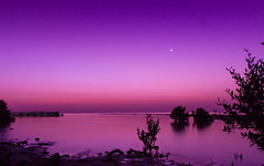 A new promise (S Dean Photography) Tags: see seascape beach water ocean port sky sawn sunrise landscape skyscape moon purple nature beauty qatar doha middle east travel expat rise canon sdeanphotography wanderlust daybreak hot long exposure mangrove earth planet