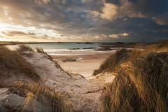 The Dog Walker (Steve W M) Tags: guernsey beach channelislands sand wind dogwalker channel islands dog walker cobo grandes rocques winter