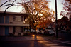Sacramento, CA (easy.beta) Tags: 100asa 2016 35mm c41 california colornegative contaxt2 kodak kodakektar100 november sacramento analog autumn centralvalley fall film