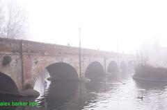 misty morning (amancalledalex) Tags: stratford stratforduponavon stratfordonavon bridge riveravon misty murky dull
