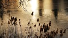 Ghiaccio, luce ed ombre (_Nick Photography_) Tags: img0095 ghiaccio luce ombra inverno tramonto winter sunset crepuscolo twilight nickphotography allegrisinasceosidiventa