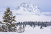 Winter's Beauty (Amy Hudechek Photography) Tags: winter january grand teton national park gtnp landscape tree forest amyhudechek wyoming mtmoran