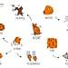 Cat English Vocabulary Map