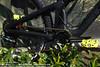 004 BikeCo Nomad (The Bike Company) Tags: santacruz time mountainbike nomad diablo carbon raceface magura mt7 novatec raceline mt6