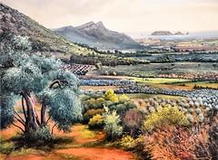 Joan Vila Armany  -  Medes (Gerard Koopman) Tags: painting cuadro estartit