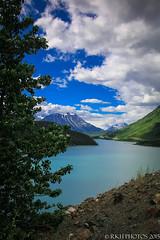 Forever Sight (Photobug70D) Tags: birds alaska reflections lakes bridges trains huskies glaciers whales eagles
