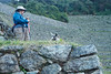 Peru-0685.jpg (Matt and Debbie) Tags: peru inca llama trail 2015 wayna winaywayna winay