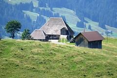Oberhabchegg aus Sicht Alp Imbrig Marbach LU (Martinus VI) Tags: schweiz switzerland suisse suiza luzern svizzera alp emmental marbach kanton entlebuch bumbach schangnau imbrig