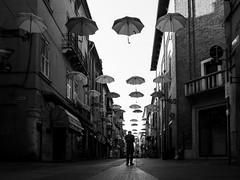 (Stella Trasforini) Tags: street blackandwhite umbrella blackwhite streetphotography streetphoto streetshot