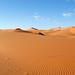 DSC02771 - Namibia 2010 Sossusvlei