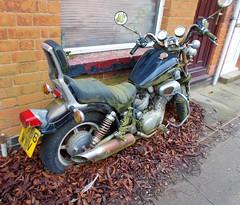 1990 YAMAHA VIRAGO SE CUSTOM 1063cc H706WYV (Midlands Vehicle Photographer.) Tags: 1990 yamaha virago se custom 1063cc h706wyv sat up unused abandoned rusty