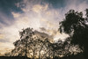 IMG_0738 (Marcelo David) Tags: landscape sky clouds sunset nature canon canon80d tokina