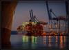 Evening Port Action (Ernie Misner) Tags: f8andcoldfingers portoftacoma tacomawashington tacoma washington port ship longshoremen erniemisner nikon d800 nik lightroom capturenx2 cnx2