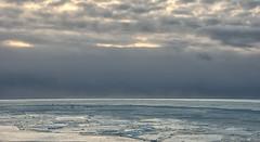 Into the frozen wide open ... (lunaryuna (off to the Lofoten)) Tags: iceland southiceland coast shore ocean atlantic winter season seasonalbeauty frozen ice seabirds thelightfantastic sky ominousskies lightmood landscape seascape lunaryuna