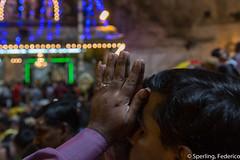 Thaipusam praying (Feches) Tags: 2015 asia batucaves cuevasdebatu kualalumpur malasia malaysia thaipusam thaipusam2015 praying rezo luces lights bokhe cueva depthoffield uña nail uñalarga longnail indian tradition tradición hands manos